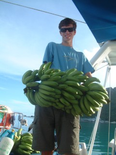 On pasage, we hang whole stalks of green bananas and try to eat them as fast as they ripen!