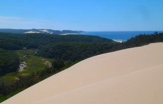 The dunes in Croajingolong NP extend for miles along the coast.