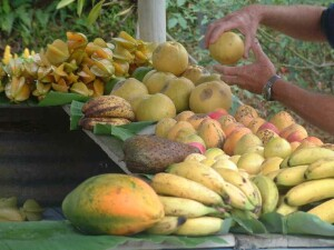 Star fruit, grapefruit, mangos, soursop, bananas, papaya