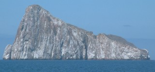 We circumnavigated Kicker Rock & all its nesting birds