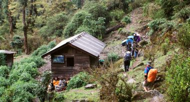 Lunch stop in the forest way below Tsokha, Skkim. India