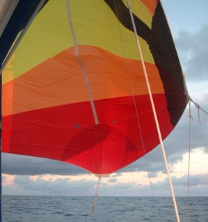 Sailing doesn't get much better than this: flying the chute on the open ocean!