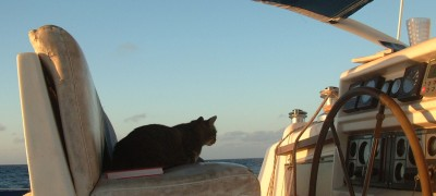 Arthur on his usual seat while underway, both day and night!