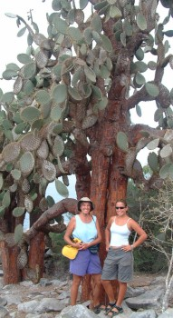 Sue and Amanda, dwarfed by an opuntia cactus in the Galapagos