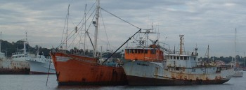 Some of the decrepit fishing fleet at Suva