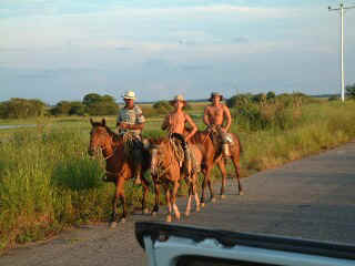 Llaneros riding from one range to another, Los Llanos